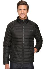 Casaca de Hombre The North Face Negro m trevail jacket