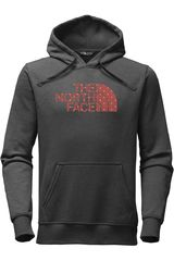The North Face Plomo de Hombre modelo M HALF DOME PULLOVER HOODIE Casual Poleras