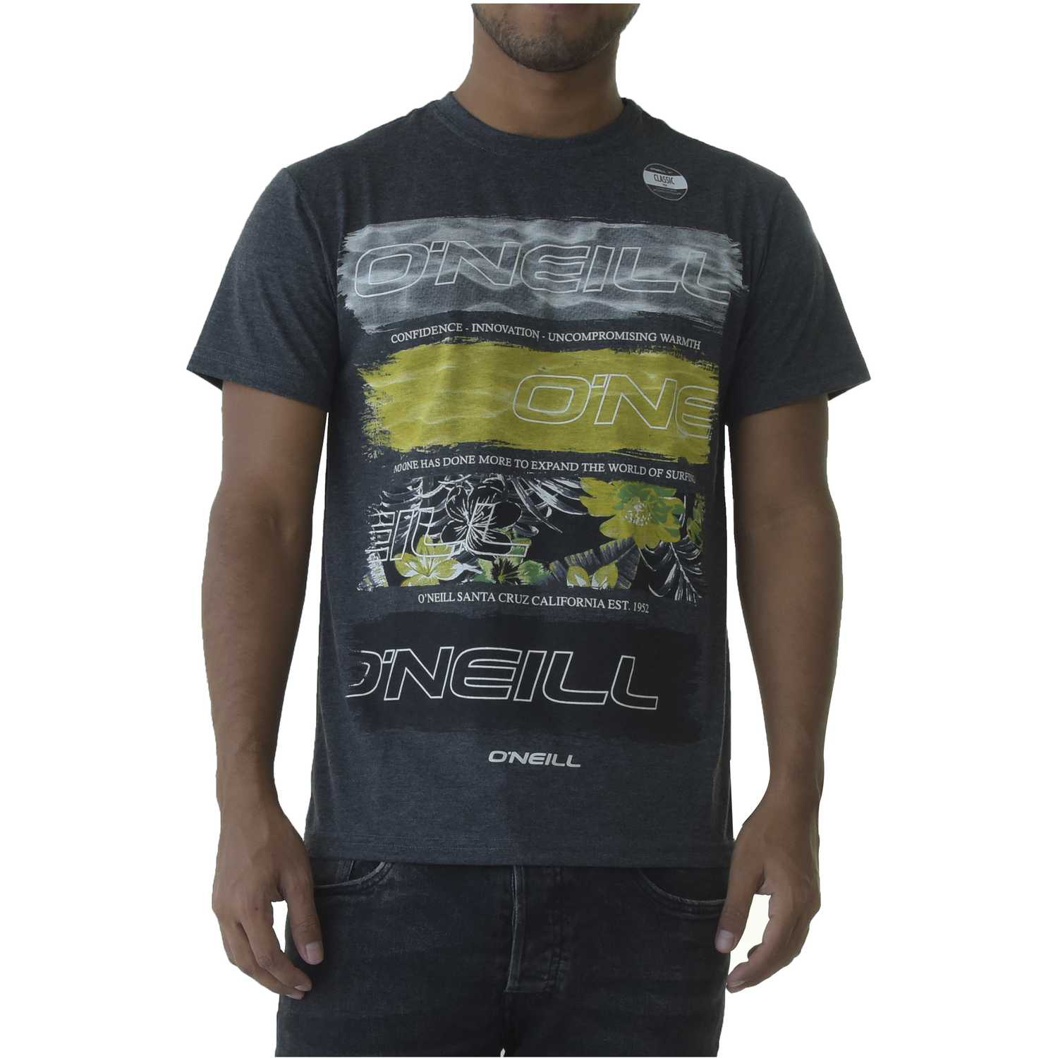 Polo de Hombre ONEILL Plomo lm photo filler t-shirt